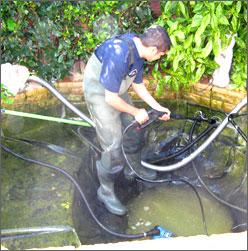 Teich reinigen top ungetrbte badefreuden auch im for Teich reinigen